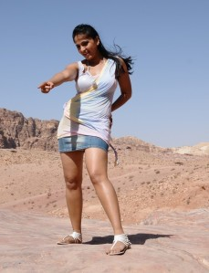 Anushka Latest Hot Photos from Ragada Movie