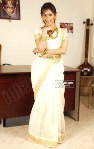 South Actress Manjari Fadnis HOT SAREE Pictures 2011